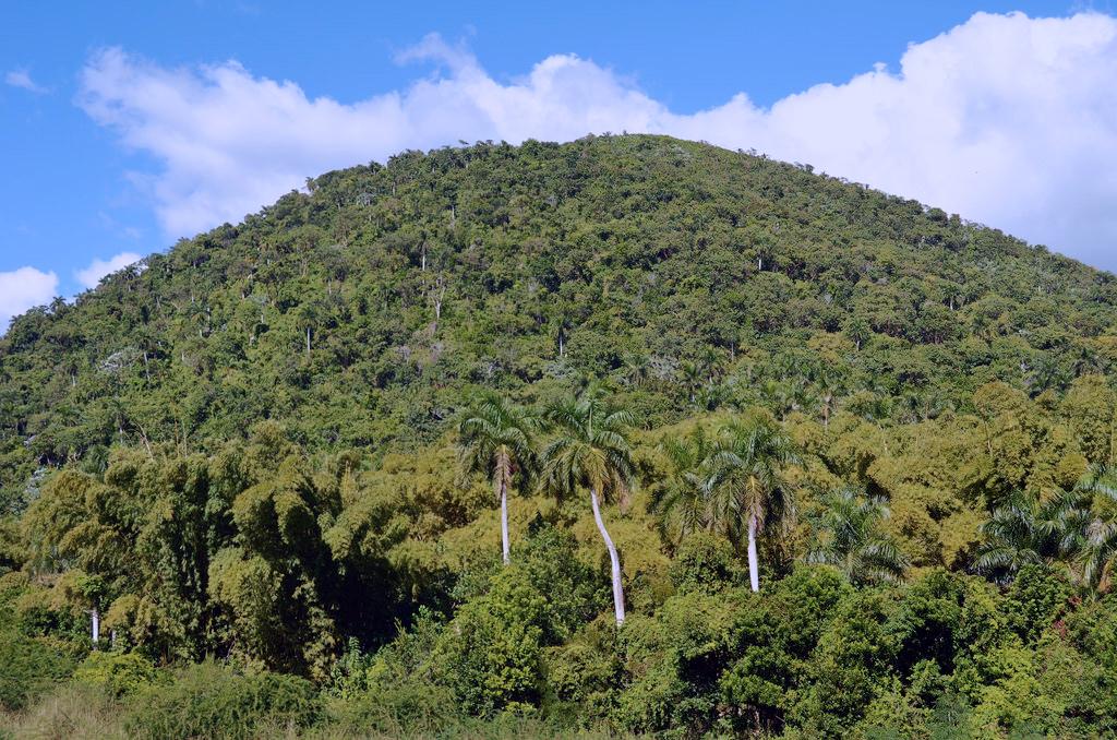 Las Terrazas Climbing El Taburete Tour